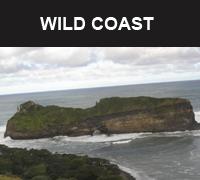 wild coast small