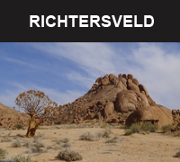 richtersveld small